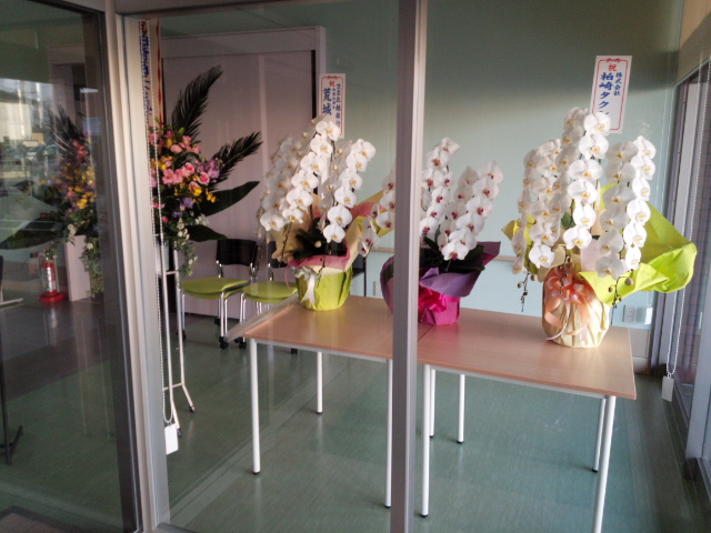 竣工式にとどいた花